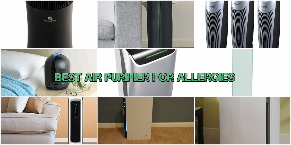 Best Air Purifier for Allergies 2017  Reviews and Comparison   Comparily com. Best Air Purifier for Allergies 2017  Reviews and Comparison