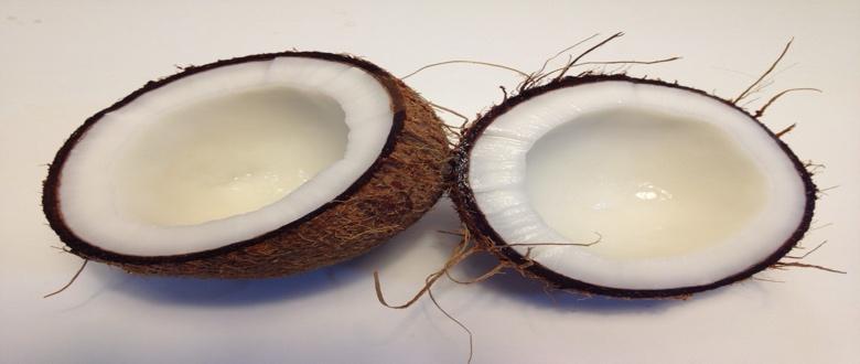 Best Fractionated Coconut Oil Reviews